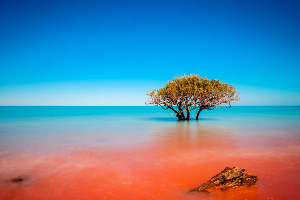 Where the red dirt meets the sea